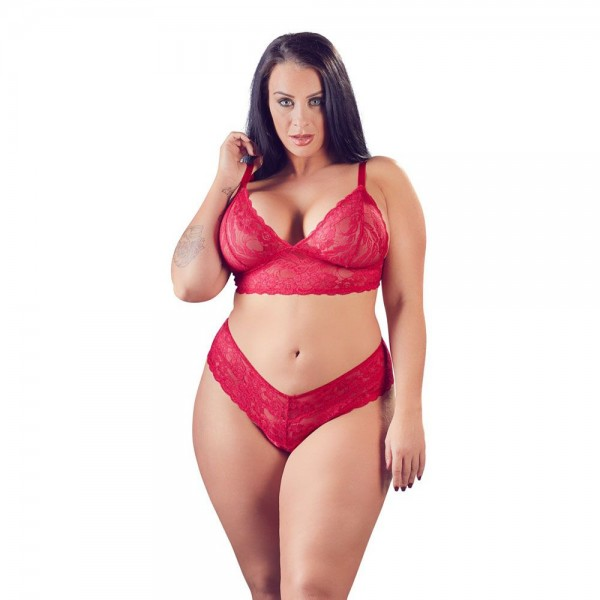 Cottelli Plus Size Red Lace Bra And Brie...